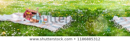 Banner with Picnic on the grass. Summer Time Rest. Flat lay. Stock photo © Illia