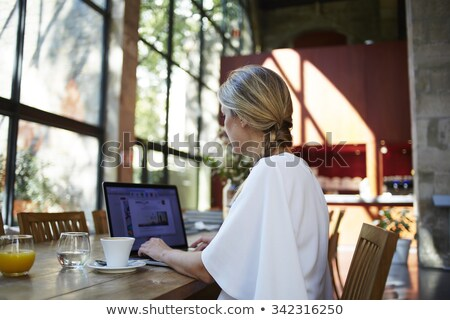 gorgeous blonde on her laptop Stock photo © photography33