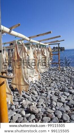hal · Portugália · tengerpart · étel · természet · halászat - stock fotó © elxeneize