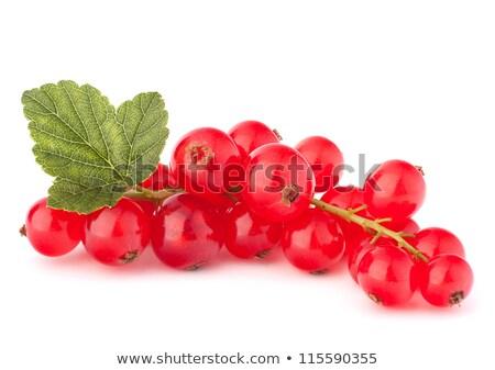 Friss érett ribiszke régi fa étel gyümölcs Stock fotó © mady70