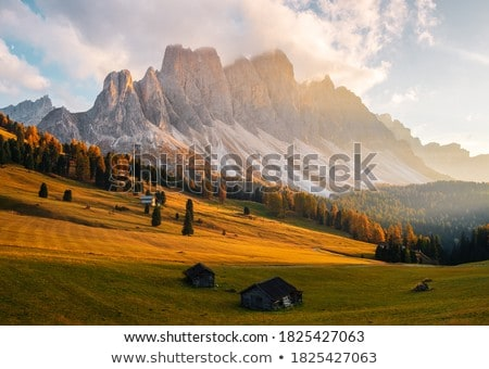 Val Gardena in Alps Stock photo © LianeM