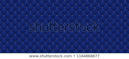 Prim mavi kumaş doku dekoratif tekstil Stok fotoğraf © Anneleven