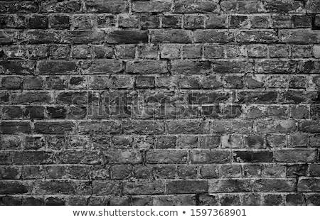 mech · kamień · bloków · ściany · starych · murem - zdjęcia stock © len44ik