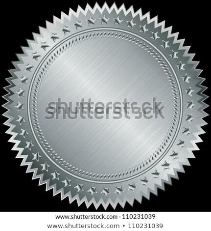 Vacío plata garantizar etiqueta vector Internet Foto stock © burakowski