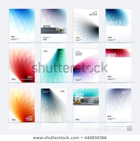 Absztrakt hullámos éves jelentés brosúra szórólap Stock fotó © SArts