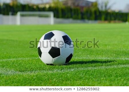 黒白 革 サッカー 緑 テクスチャ サッカー ストックフォト © wavebreak_media