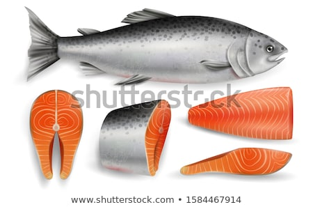 Meat vector - red fish salmon steak. Fresh meat icon. Stock photo © MarySan