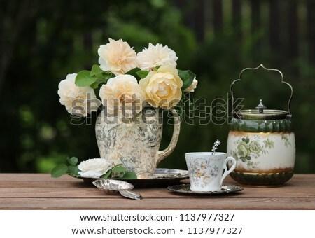 Belo rosa jardim fundo beleza Foto stock © yoshiyayo