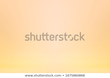 Yellow Pages Advertising. Pastels Vintage Design Concept. Stock photo © tashatuvango