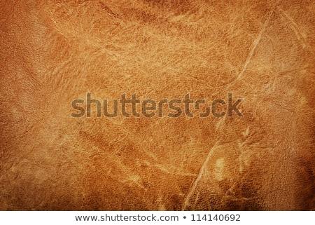 Antique leather texture Stock photo © Nejron