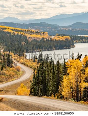 outono · cores · rio · árvores · folhas - foto stock © pictureguy