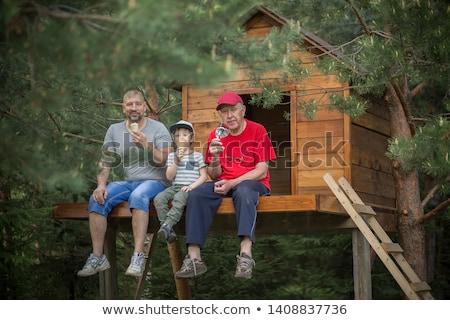 escena · casa · campo · ilustración · montana - foto stock © colematt