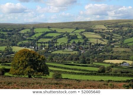 Dartmoor countryside above  Widdecombe in the Moor, Devon UK. Stock photo © latent