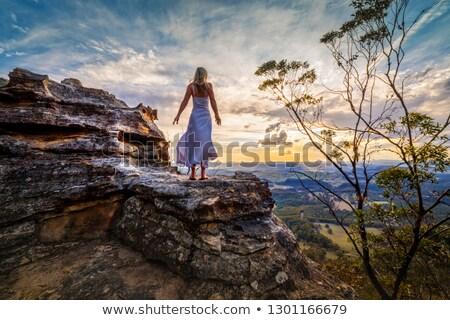 Standing on a rock  with dress blowing in the wind she dreams Zdjęcia stock © lovleah