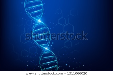Nucleic acid double helix Stock photo © bluering