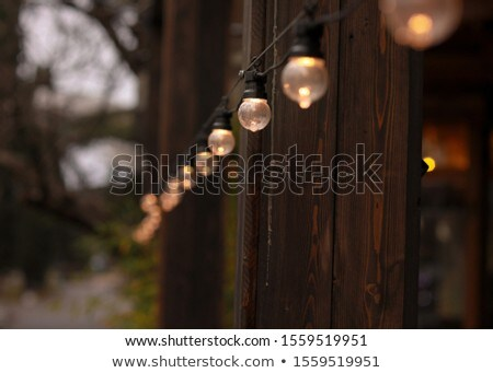 Straat guirlande lamp boom hout Stockfoto © ElenaBatkova