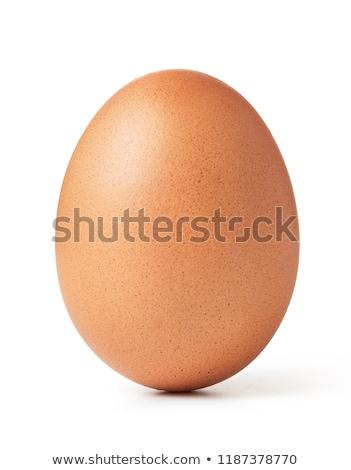 Kahverengi yumurta yalıtılmış beyaz gıda Stok fotoğraf © rozbyshaka