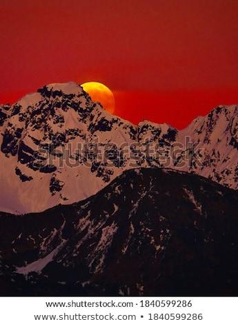 Moonrise Stock photo © ShawnHempel