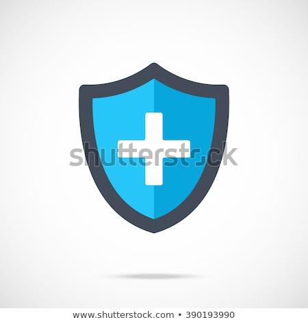 Salud azul vector icono botón Foto stock © rizwanali3d