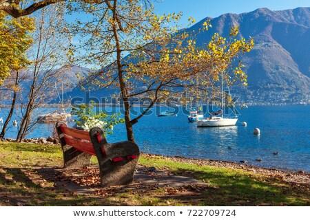 view of Lago Maggiore Stock photo © master1305