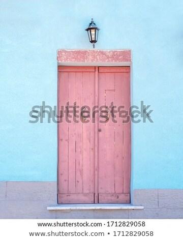 Old pink door of a building Stock photo © michaklootwijk