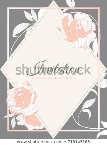 Jahrgang Hochzeitseinladung Karte eleganten Retro floral Stock foto © Morphart