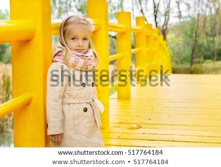 little girl stands on bridge on playground stock photo © paha_l