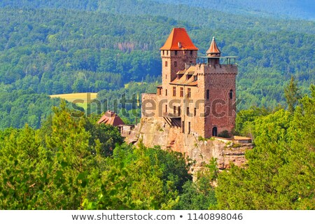 castle Berwartstein in Dahn Rockland Stock photo © LianeM