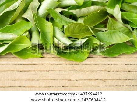 Dried curry leaves Stock photo © szefei