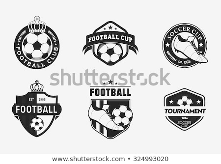 footballer shooting soccer green icon vector Stock photo © blaskorizov