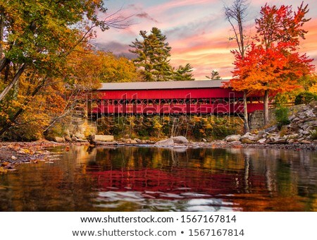 Coberto ponte belo velho pedra rural Foto stock © craig
