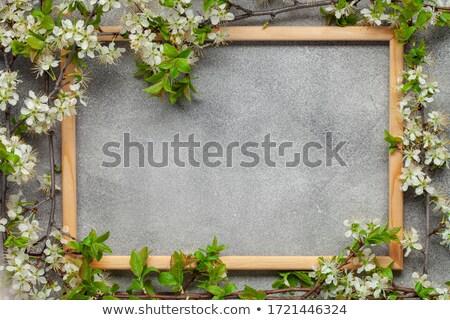Zöld virágok képkeret gradiens háló otthon Stock fotó © adamson