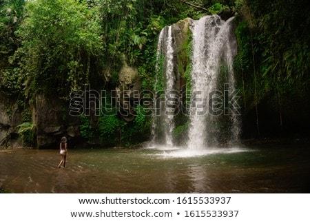 Woman traveler on a waterfall background. Ecotourism concept Stock photo © galitskaya