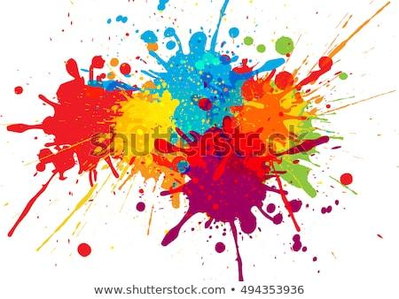 красочный Splatter Гранж вектора бизнеса воды Сток-фото © burakowski