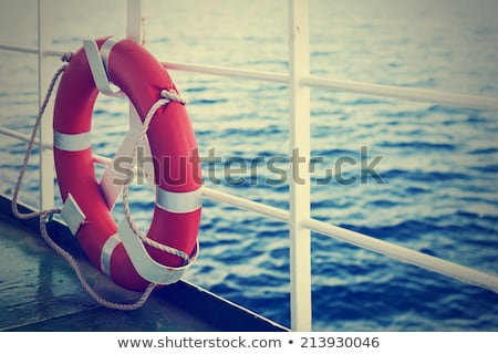 Life belt with a ship in the background Stock photo © bmonteny