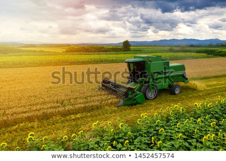 combine in a field stock photo © oleksandro