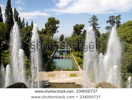 Villa Italië detail water landschap reizen Stockfoto © boggy