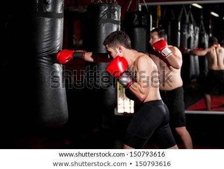 Boxeralsó képzés homokzsák tornaterem fitnessz doboz Stock fotó © Lopolo