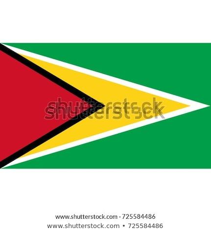 Guyana zászló ikon izolált fehér internet Stock fotó © zeffss