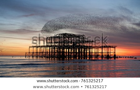 The West Pier at sunset Stock photo © dutourdumonde