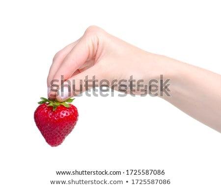 стороны · клубника · лес · небе · фрукты - Сток-фото © premiere