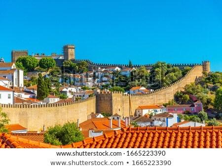 Obidos castle  Stock photo © LianeM
