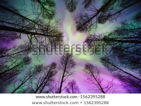 Northern lights corona above Stock photo © Juhku