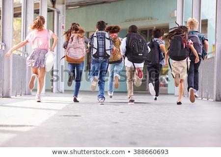 Terug naar school grens schoolbenodigdheden roze Blauw exemplaar ruimte Stockfoto © neirfy