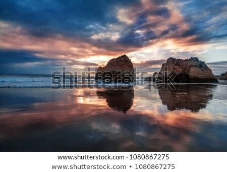 Cliff in ocean on sunset Stock photo © dmitry_rukhlenko
