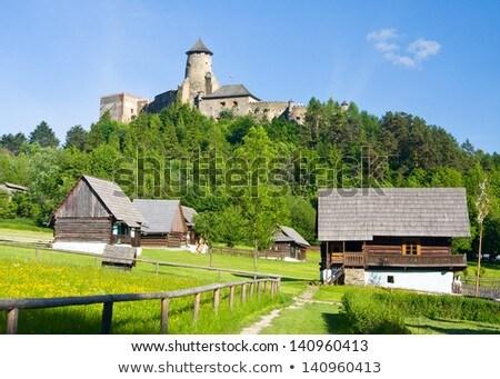Kasteel Slowakije noorden toren gebouw muur Stockfoto © borisb17
