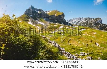 Montenegro berg dorp hemel gebouw landschap Stockfoto © joyr