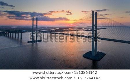 Sidney Lanier Bridge Stock photo © benkrut