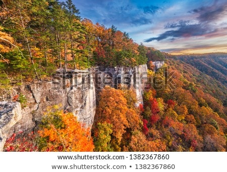 autumn in west virginia stock photo © hanusst