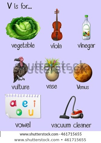 Flashcard letter V is for vegetable Stock photo © bluering